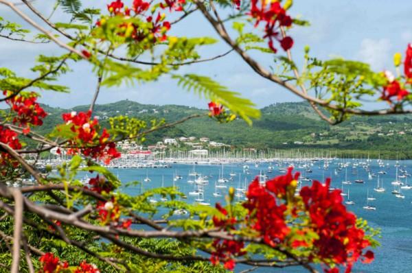Martinique zählt ab sofort zum Portdolio der Münchner Agentur LMG Management. Foto: CMT_F.SMITH